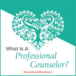 What Is a Counselor?